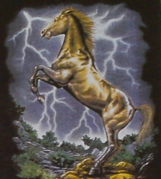 Western póló lovas motívummal S,M,-0